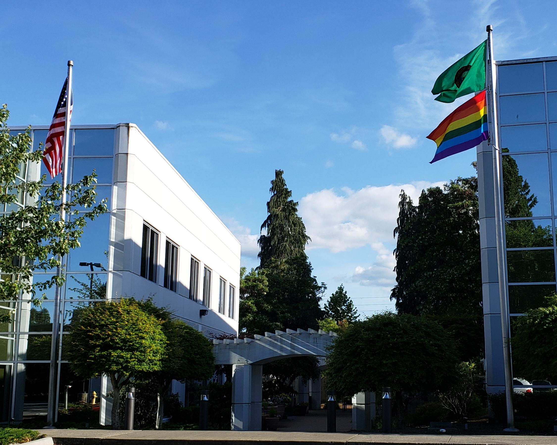 DSHS IN ACTION: Celebration of Pride