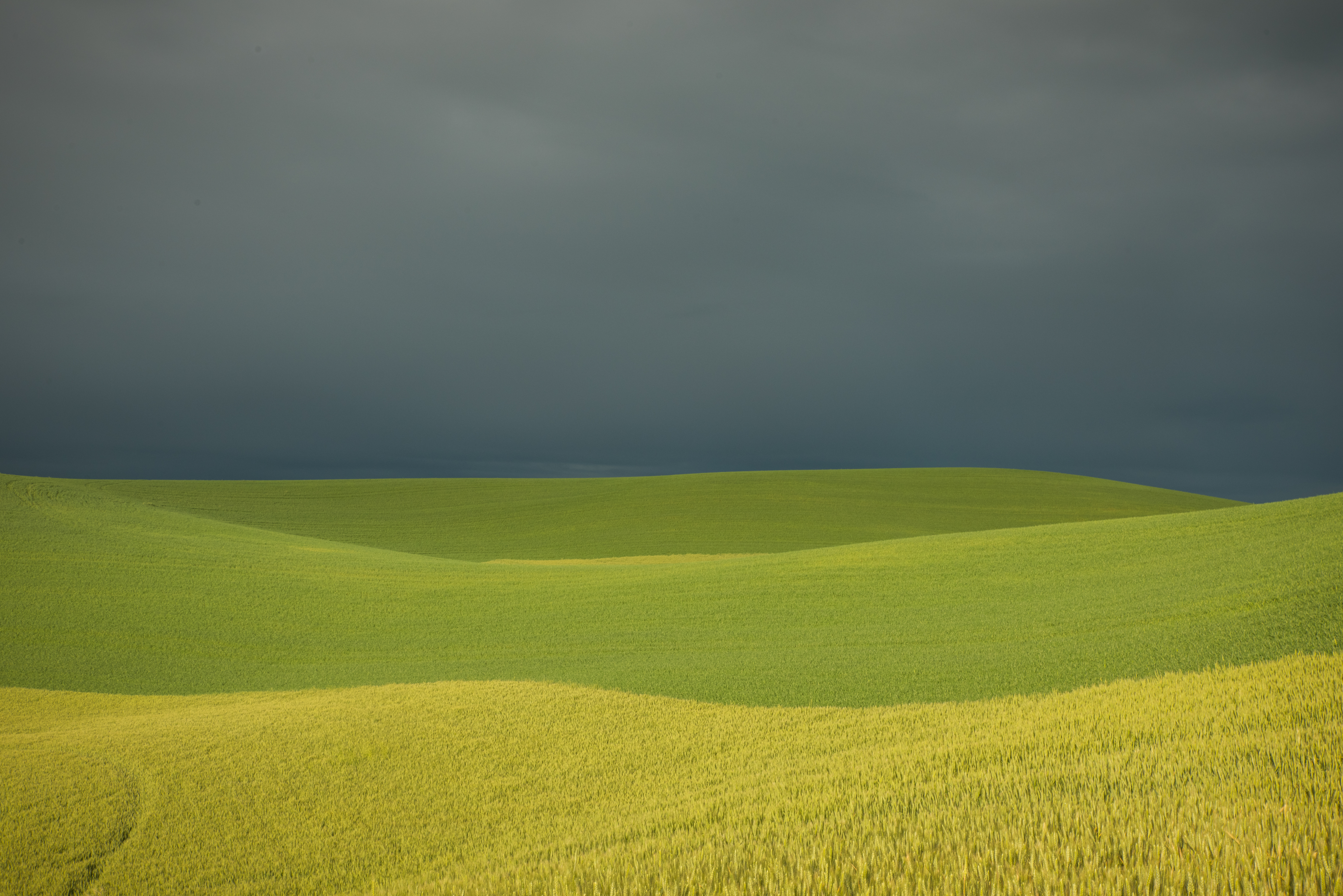 Artistic: Palouse Valley