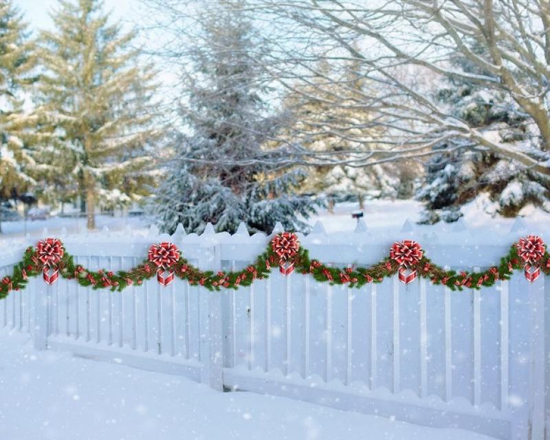 Pine trees & decoration